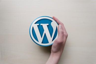 consulenza sos wordpress template codice plugin grafica box impostazioni
