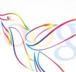 humminbird il colibrì algoritmo di Google e la seo